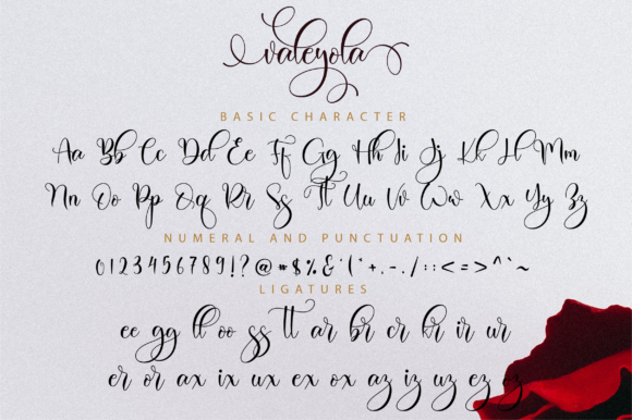 Print on Demand: Valeyola Script Script & Handwritten Font By NissaStudio - Image 11