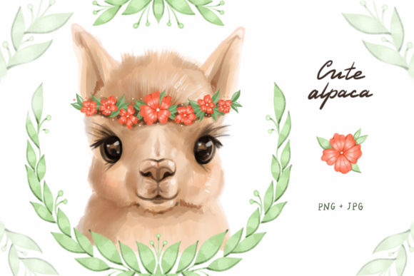 Cute Alpaca Clipart Graphic Illustrations By NataliMyaStore