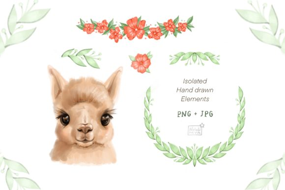 Cute Alpaca Clipart Graphic Illustrations By NataliMyaStore - Image 2