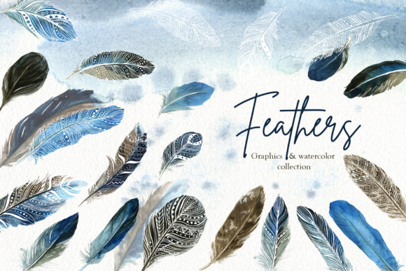 Feathers Set Graphic Illustrations By lena-dorosh