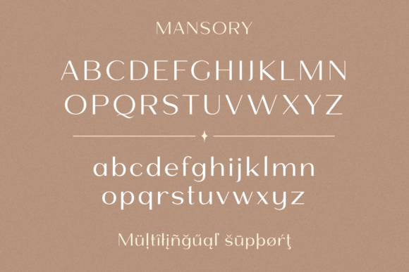 Print on Demand: Mansory Sans Serif Font By Pasha Larin - Image 12