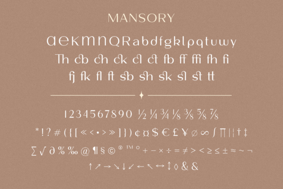 Print on Demand: Mansory Sans Serif Font By Pasha Larin - Image 13