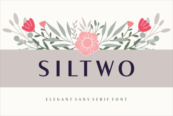 Print on Demand: Siltwo Sans Serif Font By Situjuh