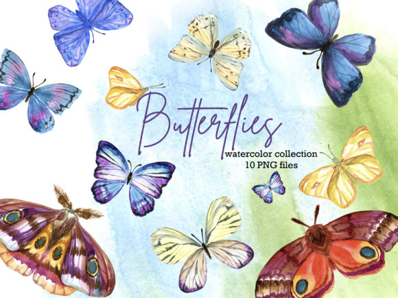 Watercolor Butterfly Graphic Illustrations By lena-dorosh