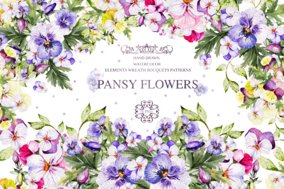 Watercolor Pansy Flowers Graphic Objects By Knopazyzy