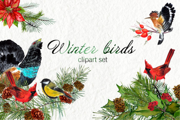 Watercolor Winter Birds Graphic Illustrations By ElenaZlataArt