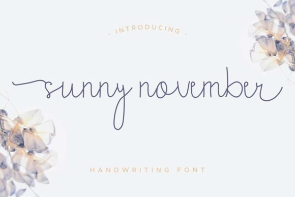 Print on Demand: Sunny November Script & Handwritten Font By EdricStudio
