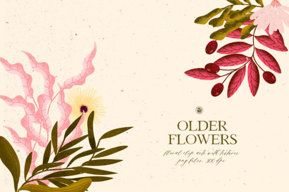 Older Flowers Graphic Illustrations By webvilla
