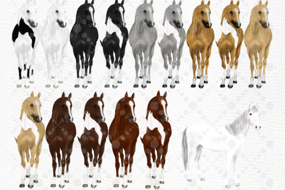 Watercolor Horse Clipart,Horse Breeds Graphic Illustrations By LeCoqDesign - Image 2