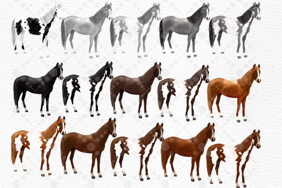 Watercolor Horse Clipart,Horse Breeds Graphic Illustrations By LeCoqDesign - Image 3