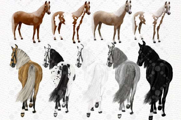 Watercolor Horse Clipart,Horse Breeds Graphic Illustrations By LeCoqDesign - Image 4