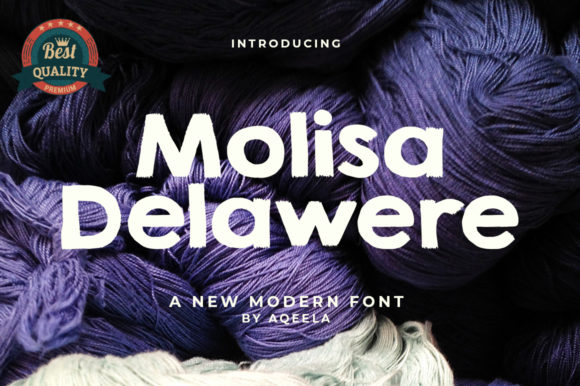 Print on Demand: Molisa Deleware Sans Serif Font By Aqeela Studio