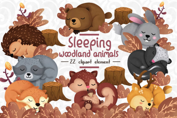 Print on Demand: Sleeping Woodland Animals Clipart Set 1 Grafik Illustrationen von accaliadigital