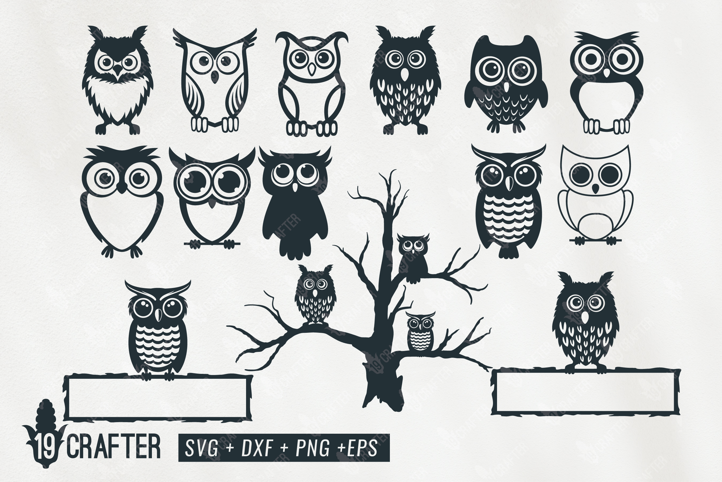 Cute Owl Character Bundle Graphic By Great19 Creative Fabrica