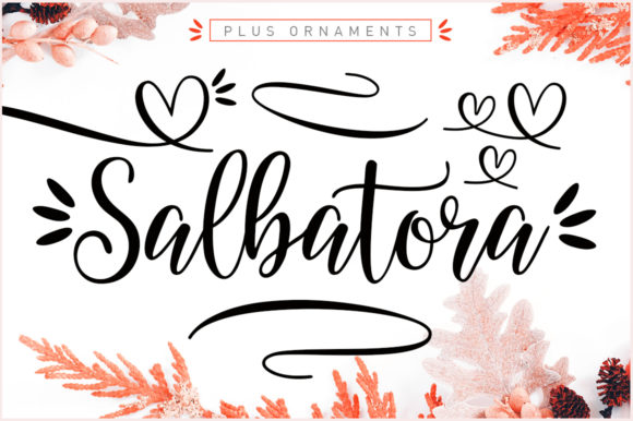 Print on Demand: Salbatora Script & Handwritten Font By Area Type
