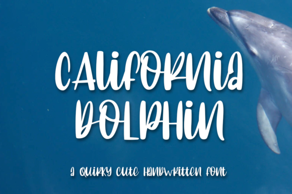 Print on Demand: California Dolphin Script & Handwritten Font By Haksen