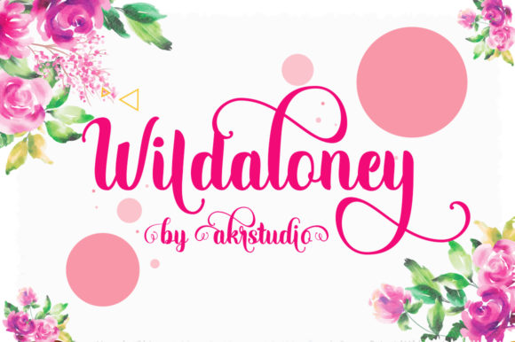 Print on Demand: Wildaloney Script & Handwritten Font By akrtype