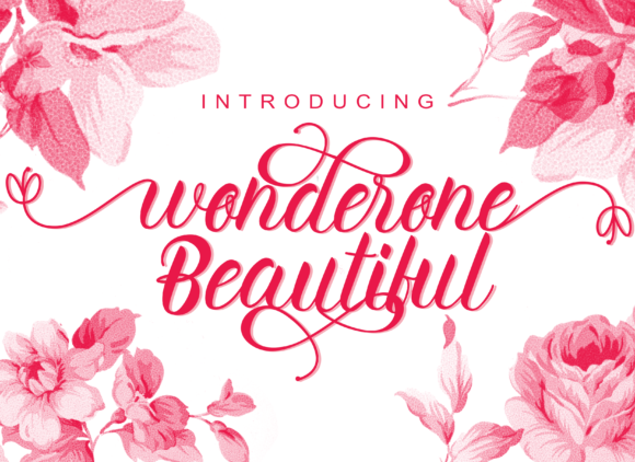 Print on Demand: Wonderone Beautiful Script & Handwritten Font By Letterfand.Studio - Image 1
