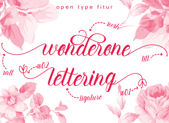 Print on Demand: Wonderone Beautiful Script & Handwritten Font By Letterfand.Studio - Image 7