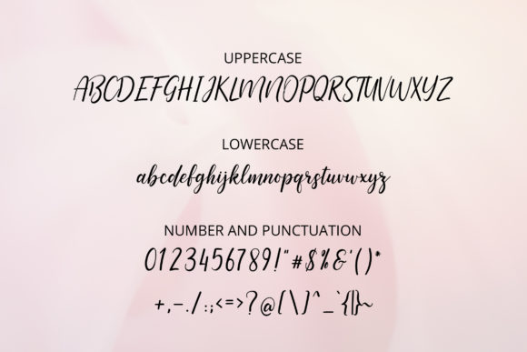 Print on Demand: Aquilaria Script & Handwritten Font By practype - Image 2