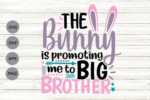 Bunny Is Promoting Me To Big Brother Graphic By Cosmosfineart