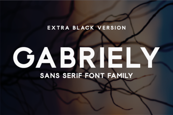 Print on Demand: Gabriely Extra Black Sans Serif Font By Huntype