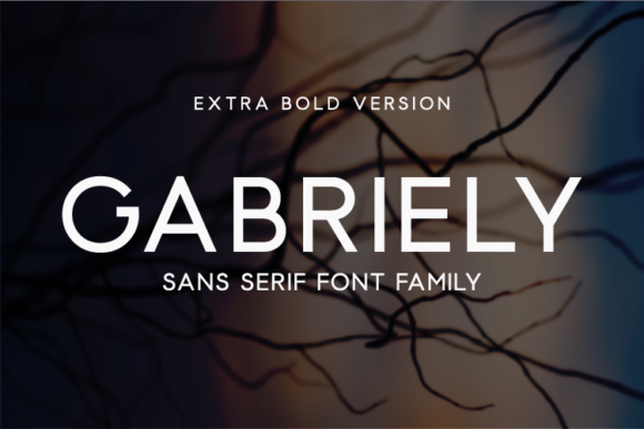Print on Demand: Gabriely Extra Bold Sans Serif Font By Huntype