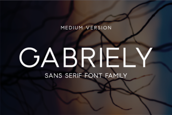Print on Demand: Gabriely Medium Sans Serif Font By Huntype