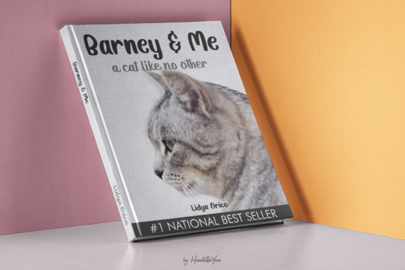 Print on Demand: Katty Purry Display Font By yean.aguste - Image 5