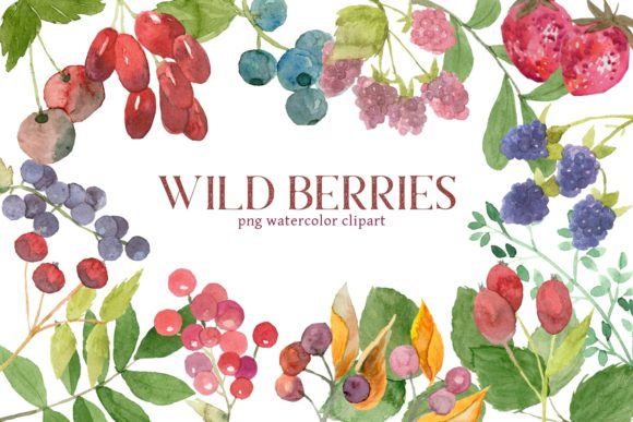 Print on Demand: Mixed Berries Watercolor Clipart Graphic Illustrations By roselocket