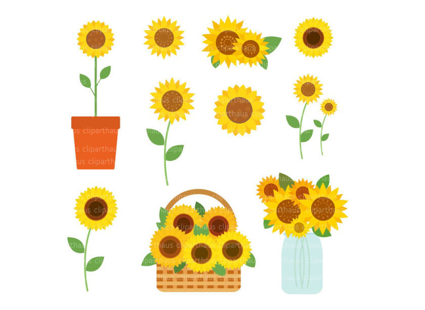 Download Free Sunflower Clipart Vector Graphic Graphic By Svg Den Creative for Cricut Explore, Silhouette and other cutting machines.