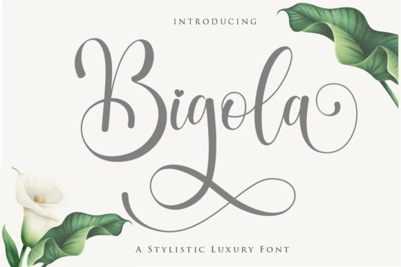 Print on Demand: Bigola Script & Handwritten Font By Gilar Studio