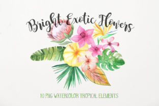 Download Free Watercolor Exotic Flowers Mini Set Graphic By Larysa Zabrotskaya Creative Fabrica for Cricut Explore, Silhouette and other cutting machines.