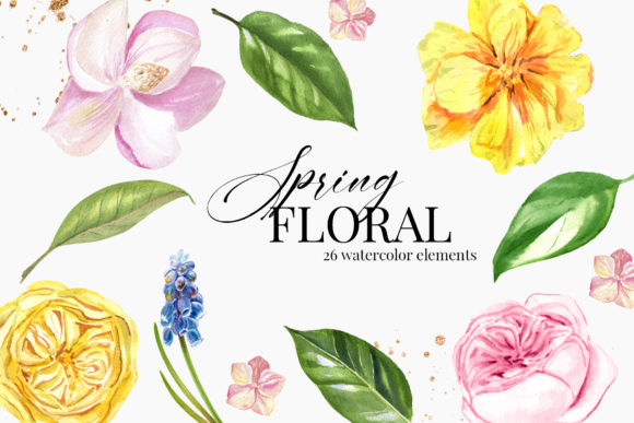 Watercolor Spring Flower Clipart Graphic Illustrations By lena-dorosh