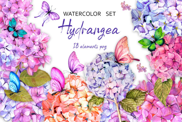 Hydrangea Garden Watercolor Clipart Graphic Illustrations By ElenaZlataArt