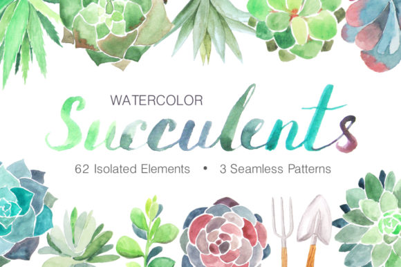 Watercolor Succulents Collection Graphic Illustrations By Larysa Zabrotskaya