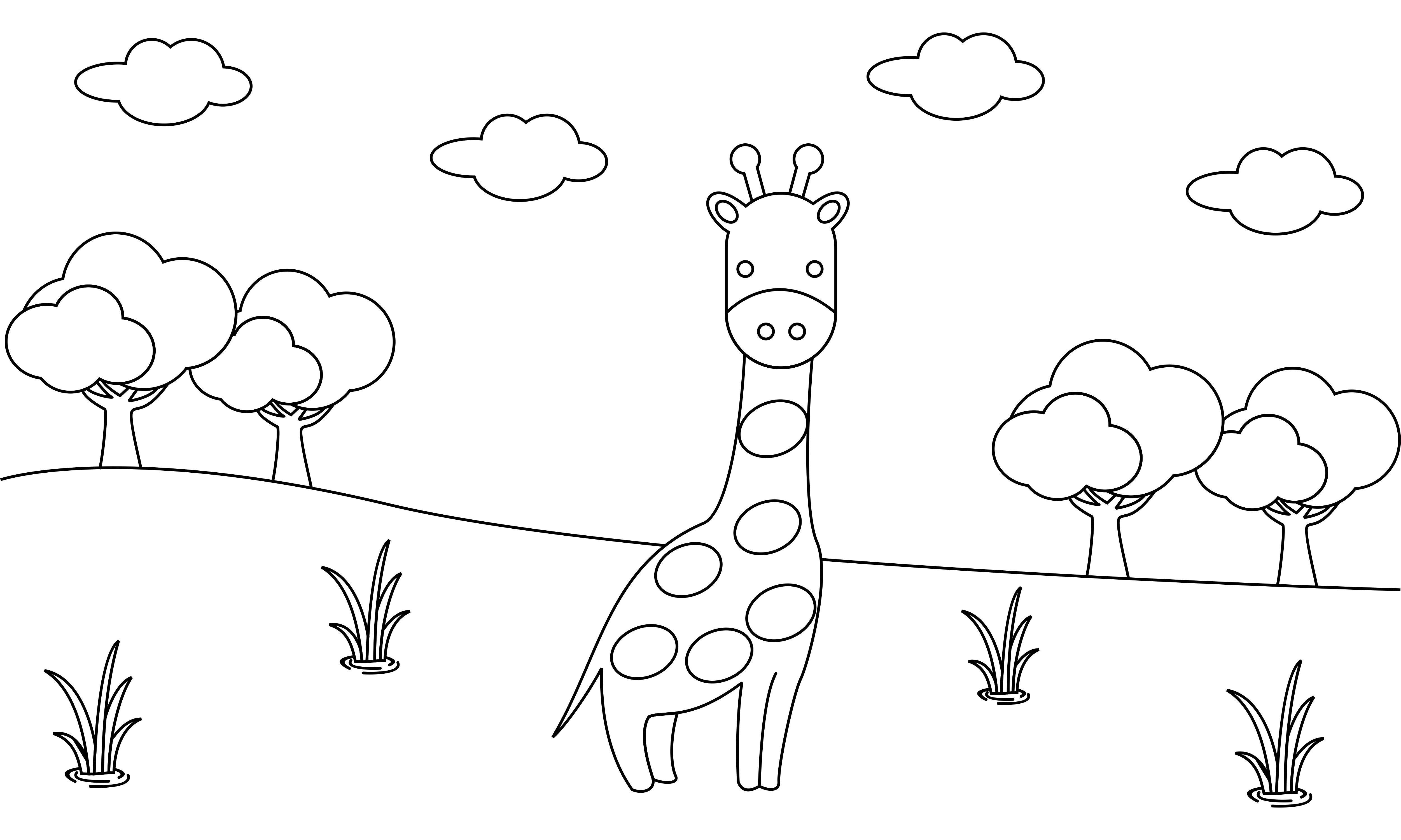 - Coloring Book Animals To Educate Kids. (Graphic) By 2qnah