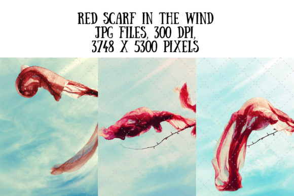 Red Scarf in the Wind (motion) Graphic Arts & Entertainment By My Little Black Heart