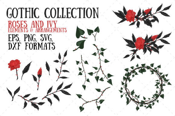 Roses and Ivy Graphic Illustrations By My Little Black Heart
