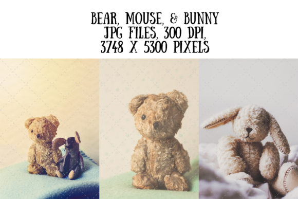 Vintage Soft Toys (Bear, Bunny, Mouse) Graphic Animals By My Little Black Heart