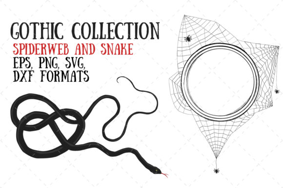 Spiderweb and Snake Graphic Illustrations By My Little Black Heart