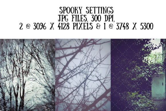 Spooky Background Images Graphic Holidays By My Little Black Heart