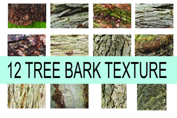 Print on Demand: Tree Bark Texture Graphic Textures By rodesigns