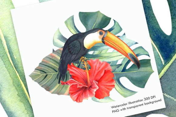 Print on Demand: Watercolor Tropical Illustration I Graphic Illustrations By evgenia_art_art