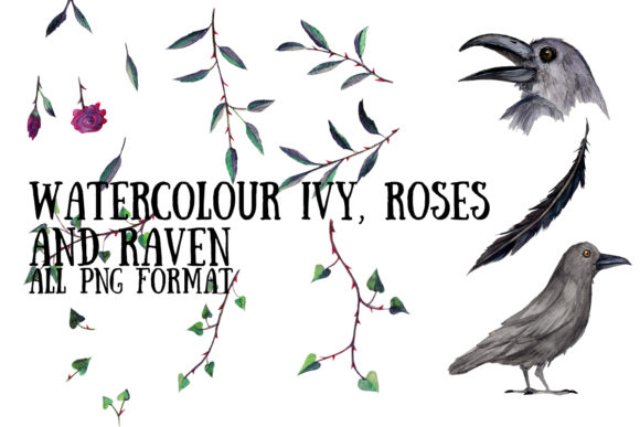 Watercolour Ivy, Roses and Ravens Graphic Illustrations By My Little Black Heart