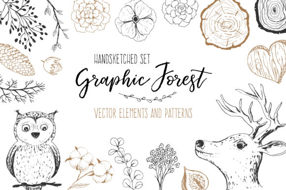 Vector Graphic Forest Collection Graphic Illustrations By Larysa Zabrotskaya
