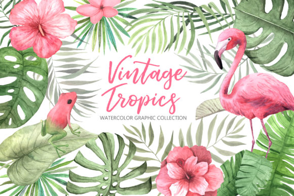Watercolor Vintage Tropical Set Graphic Illustrations By Larysa Zabrotskaya