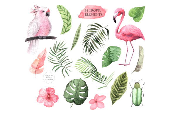 Download Free Watercolor Vintage Tropical Set Graphic By Larysa Zabrotskaya for Cricut Explore, Silhouette and other cutting machines.