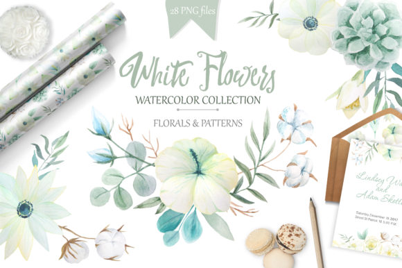 Watercolor White Flowers Set Graphic Illustrations By Larysa Zabrotskaya