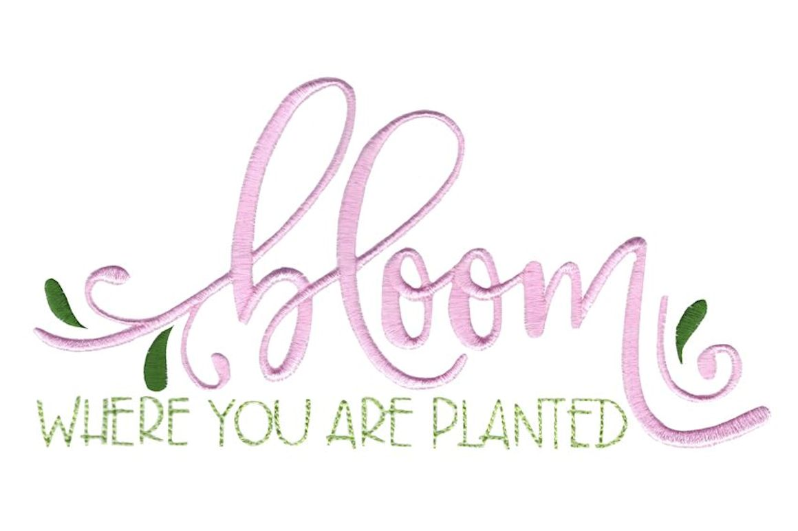 Bloom Where You Are Planted Creative Fabrica